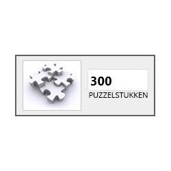 300 stukjes
