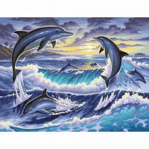 Schilderen op nummer Dolfijnen