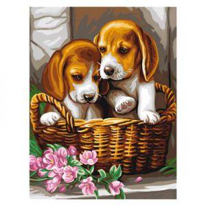 Schilder op nummer puppy