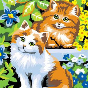 Schilderen op nummer kittens