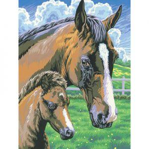 Schilderen op nummer paard