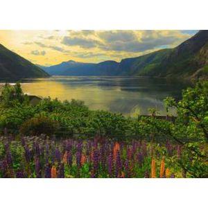 Puzzel 1000 stuks fjord in noorwegen