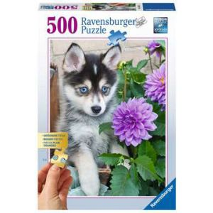 Puzzel 500 stuks schattige husky