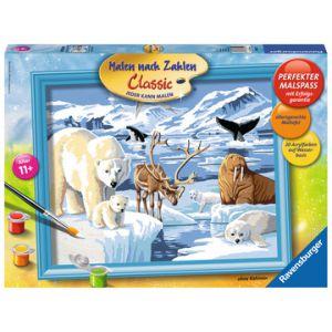 S.O.N. dieren op antartica