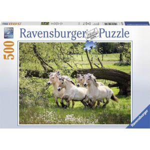 Puzzel 500 stuks noorse fjordenpaarden