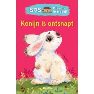 Boek konijn is ontsnapt
