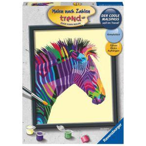 Schilderen op nummer bonte zebra