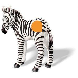 TipToi Zebra veulen