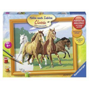 Schilderen op nummer Wilde Paarden