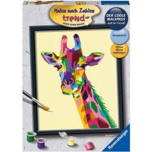 Schilder Op Nummer Bonte Giraffe